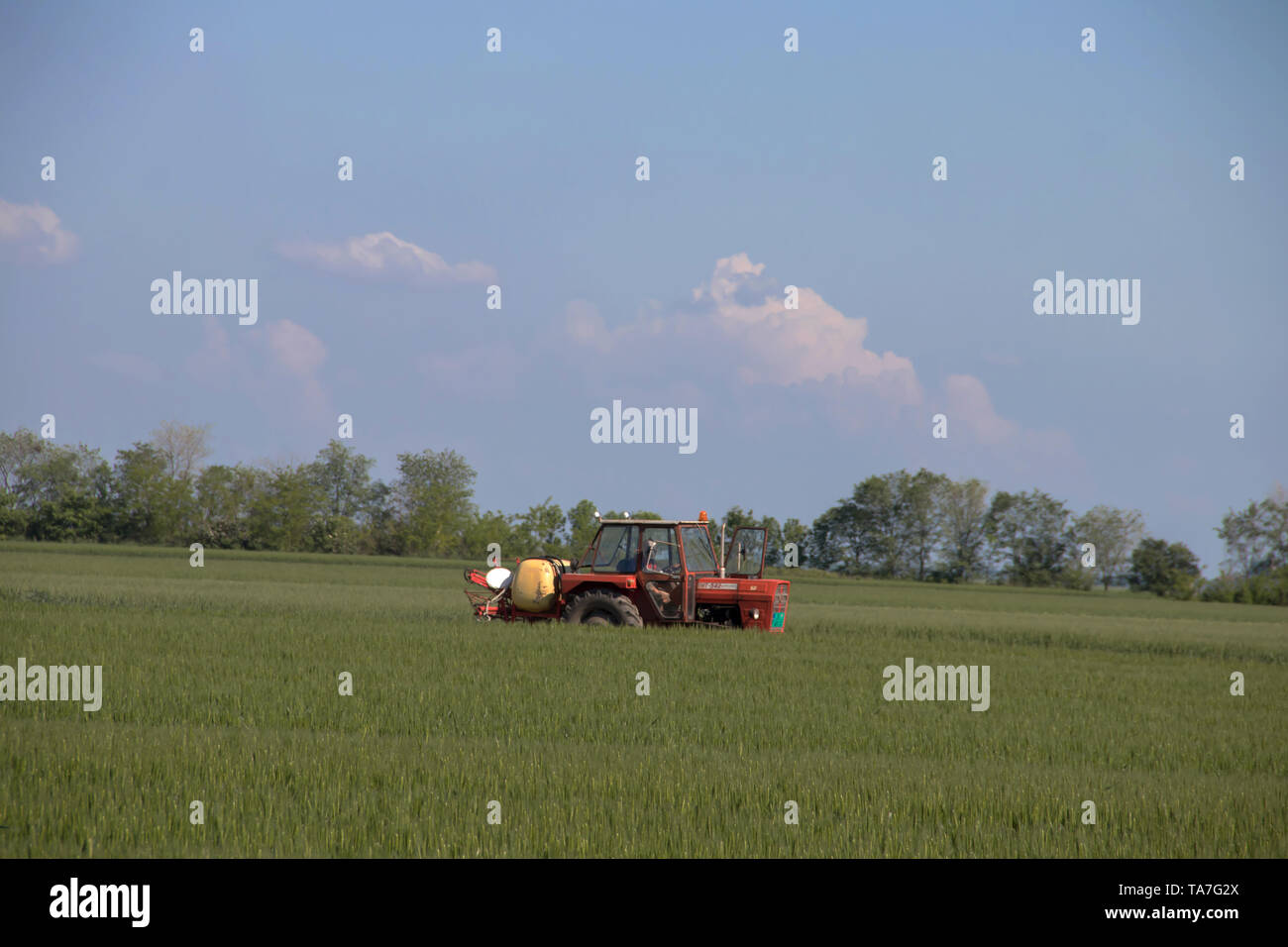 Red tractor in agricultural fields of Vojvodina (Serbia), near city of Zrenjanin - Stock Image