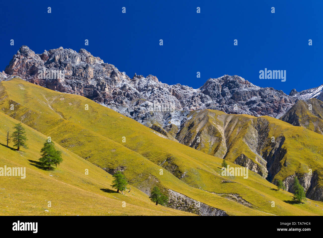 View of Piz Fier, Val Trupchun, Swiss National Park, Graubuenden, Switzerland - Stock Image
