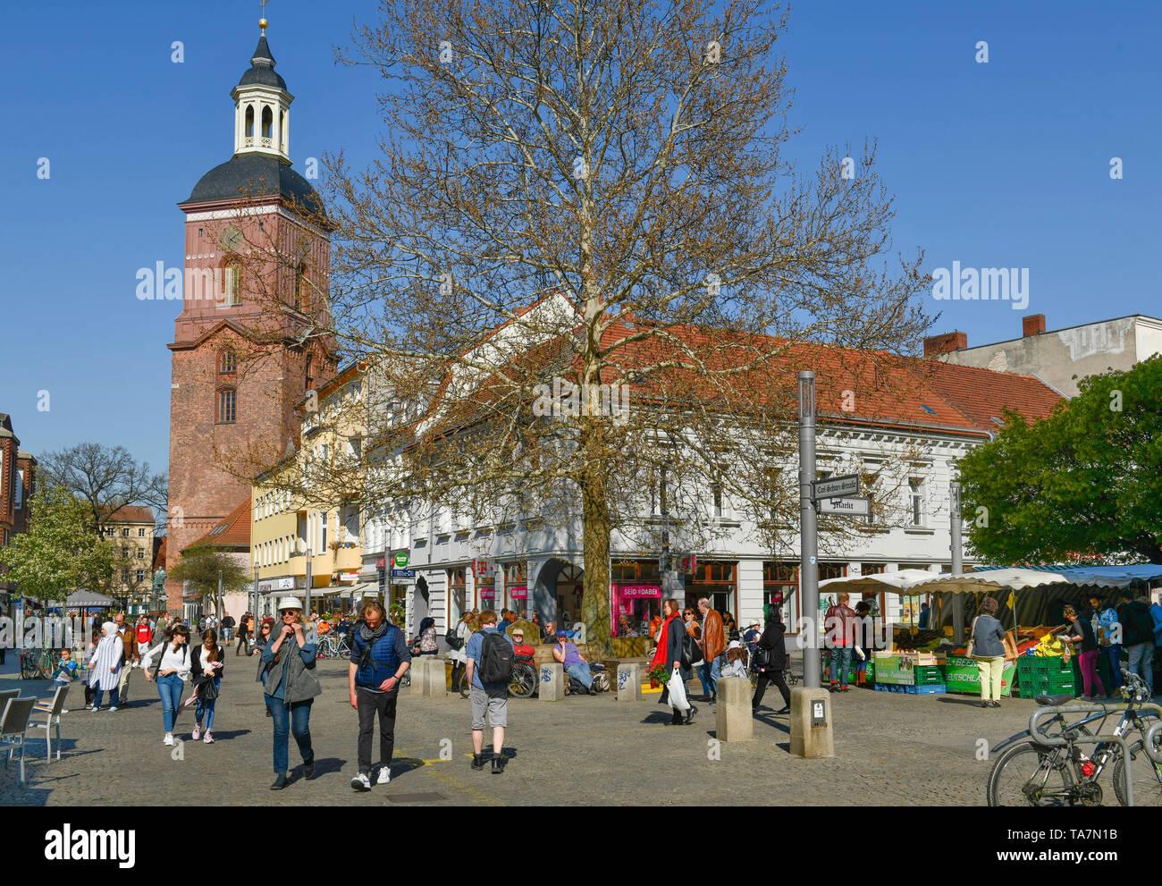 Pelican crossing, Einkaufstrasse, Carl apron street, Old Town, Spandau, Berlin, Germany, Fußgängerzone, Einkaufstraße, Carl-Schurz-Straße, Altstadt, D - Stock Image