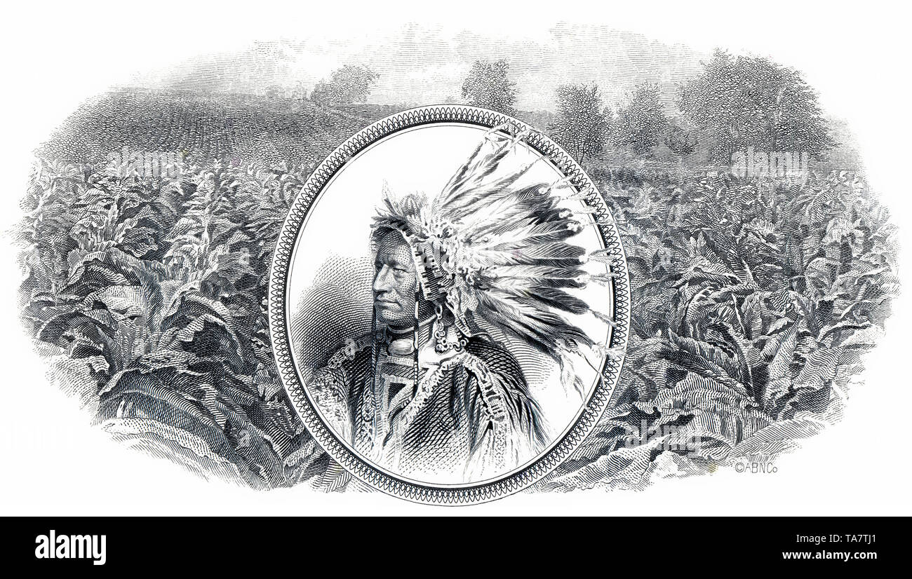 Historic stock certificate, detail, tobacco plantation and a Red Indian chief with headdress, The American Tobacco Company, ATC, 1965, New Jersey, USA, Historische Aktie,  Detail, Tabakplantage und Indianerhäuptling mit Federschmuck, The American Tobacco Company ATC, Tabakunternehmen, 1965,  New Jersey, USA - Stock Image