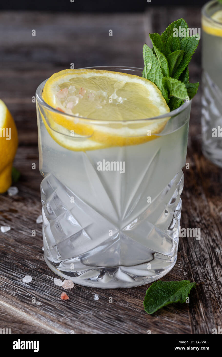 Gin Tonic with slices of lemon and fresh mint leaves - Stock Image