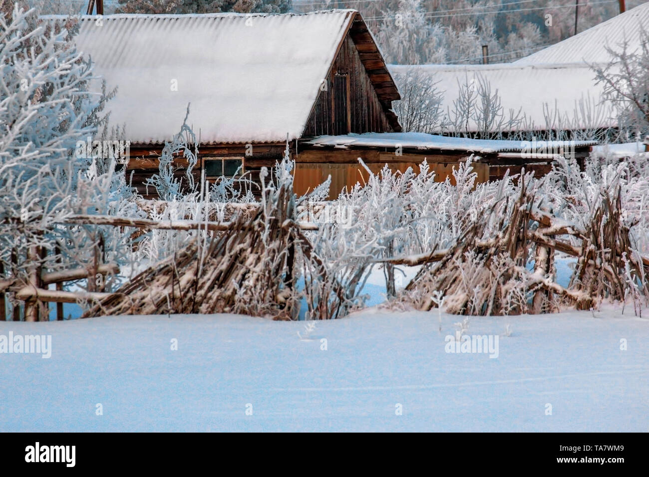 Winter landscape: an old wooden house with a decrepit and rickety fence. Snow-covered housing in a Russian village in Siberia - Stock Image