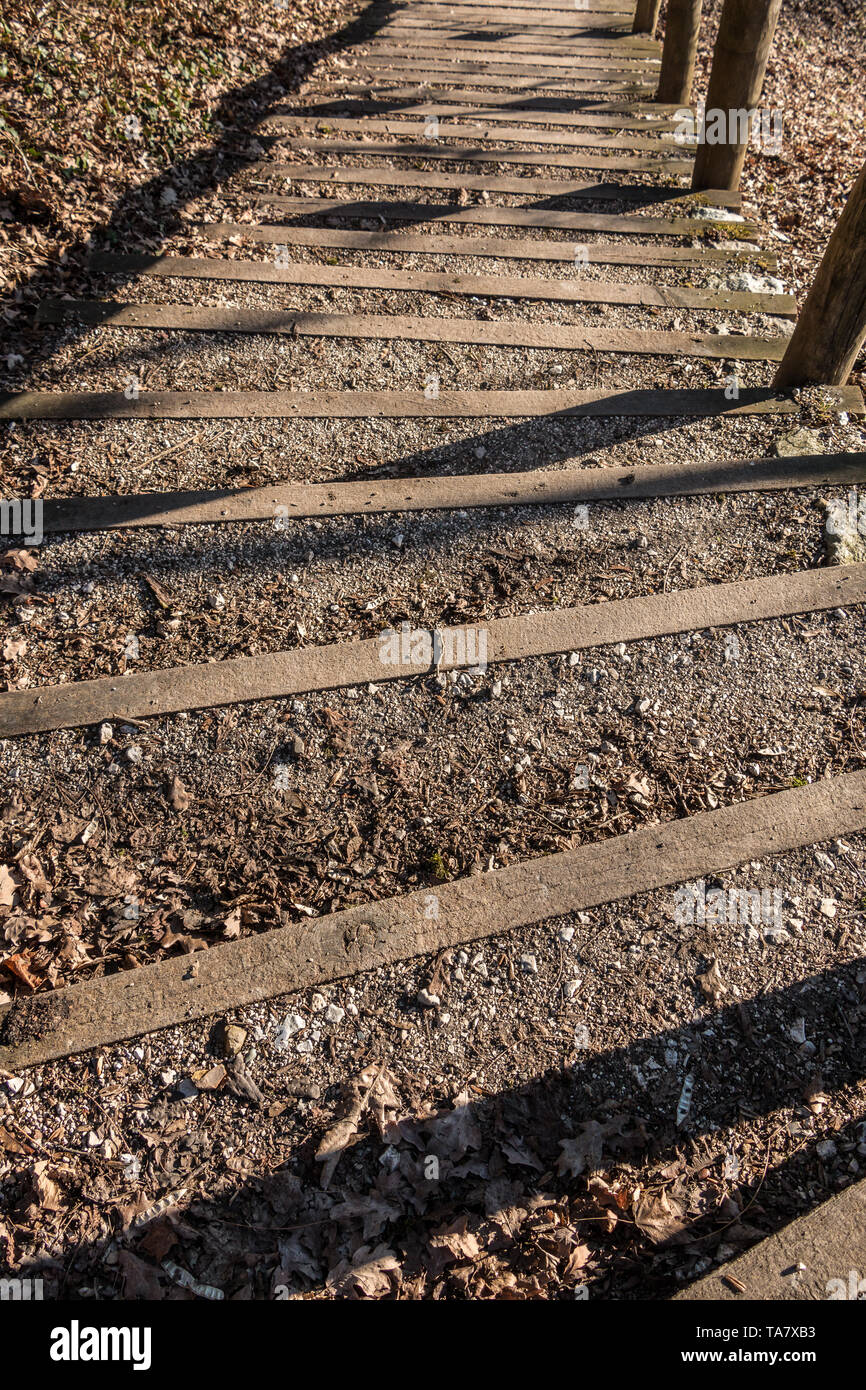 Wooden stairway with stones and fallen leaves - Stock Image