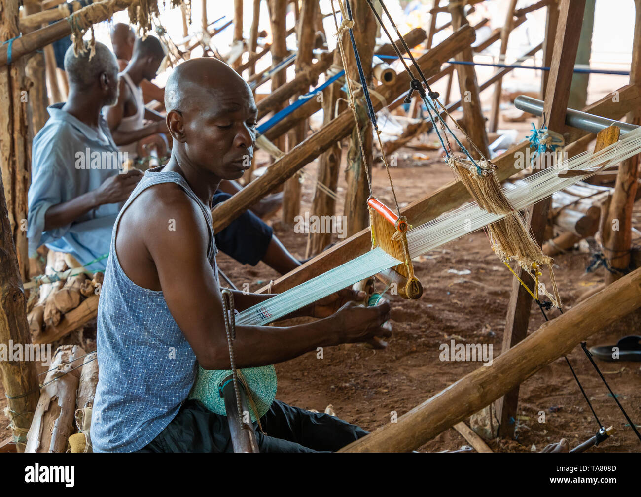 African men weaving in a traditional textile factory, Savanes district, Waraniene, Ivory Coast - Stock Image