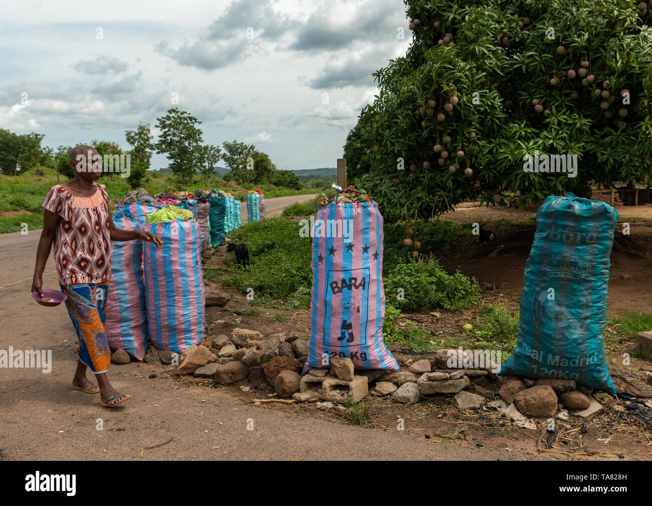 Coal for sale in big bags along the road, Bafing, Yo, Ivory Coast Stock Photo