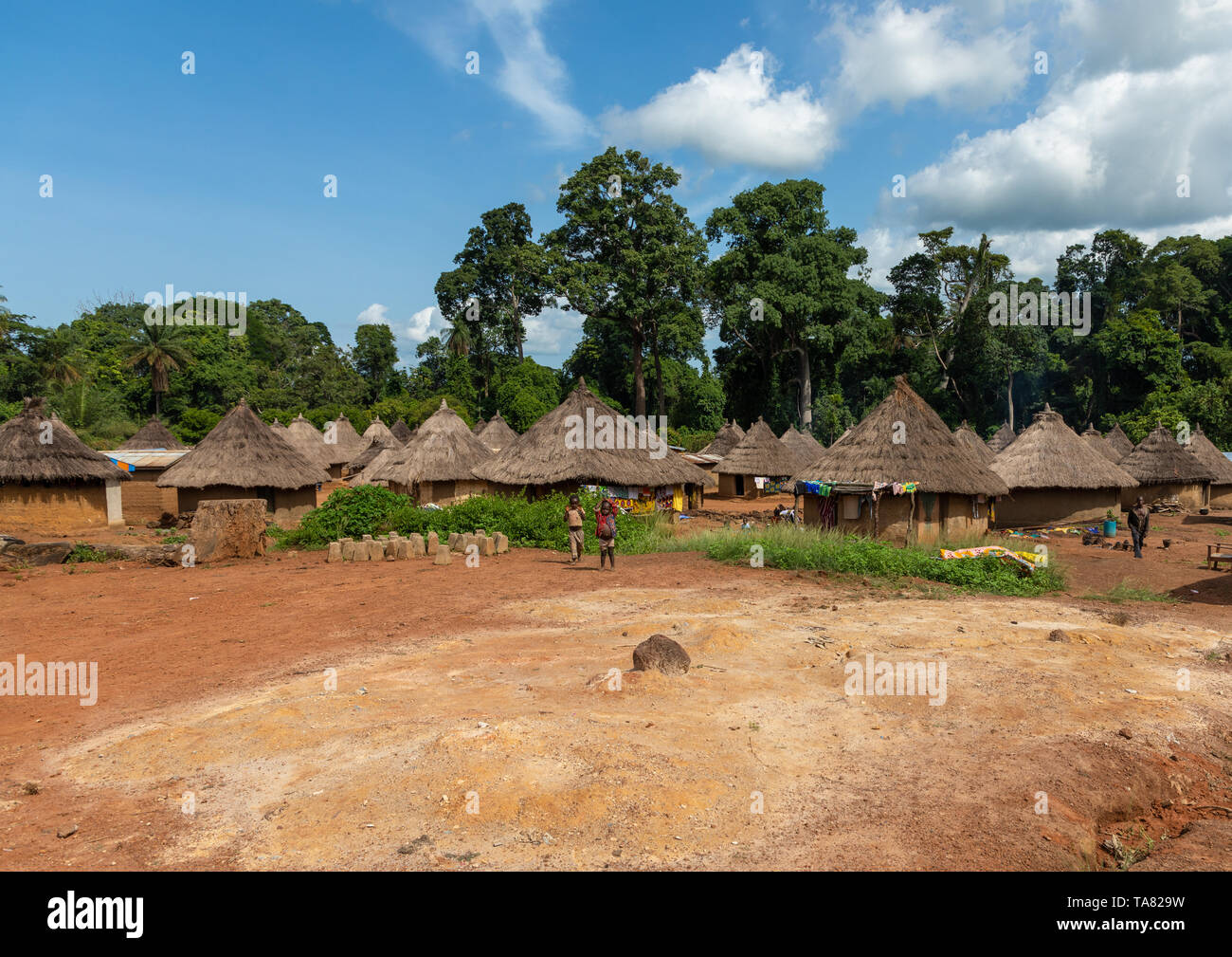 Huts with thatched roofs in a village, Bafing, Gboni, Ivory Coast Stock Photo