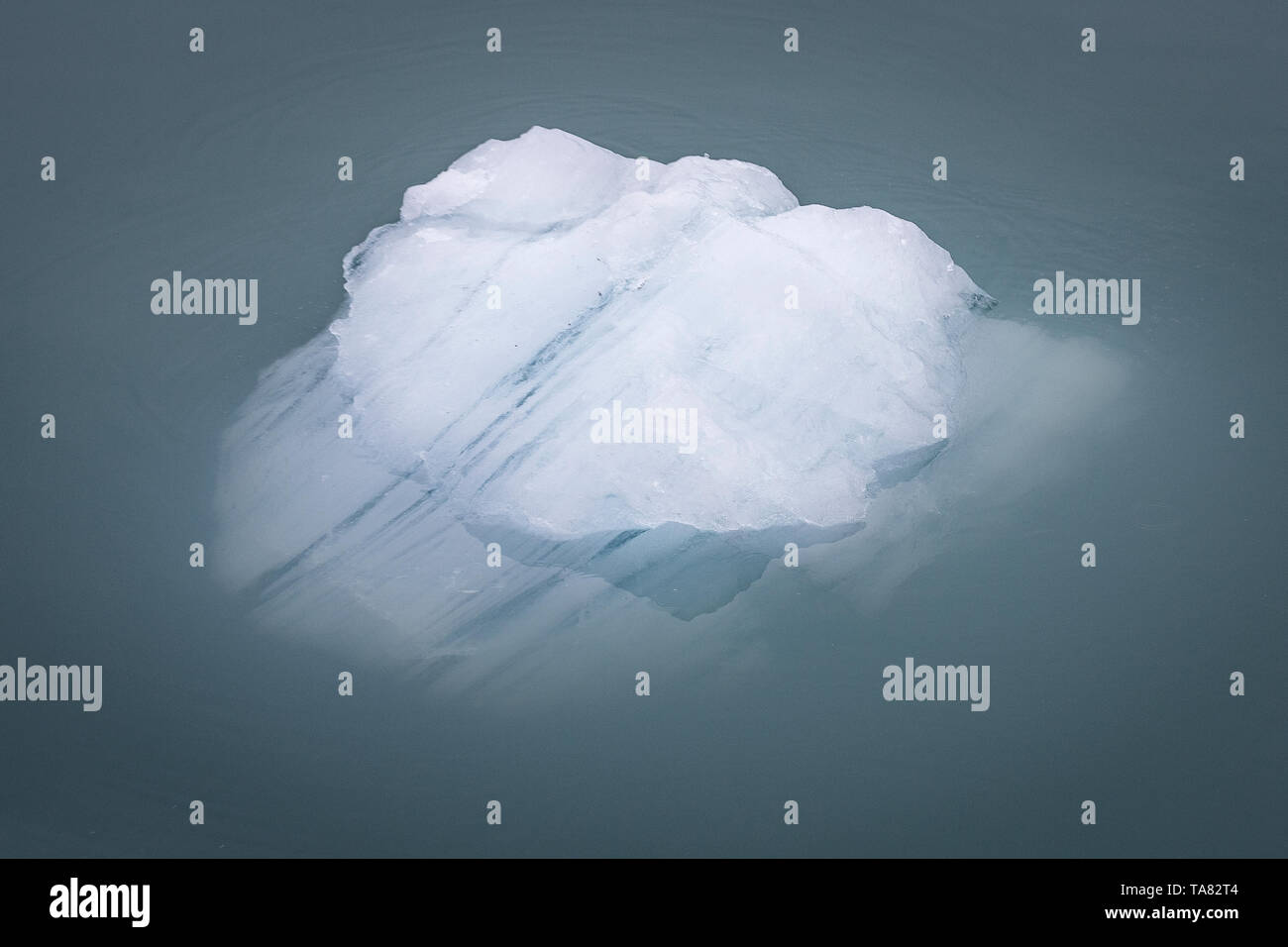 Pieces of glacier ice Nordenskiöldbreen near Pyramiden, on the coast of Billefjord, Svalbard. Norway - Stock Image