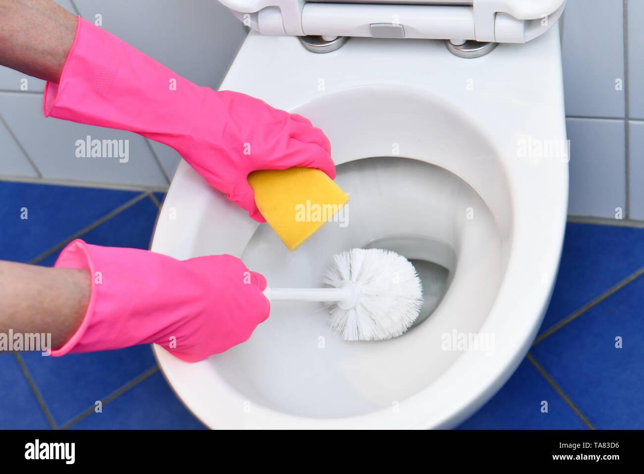 Cleaning, bathroom, toilet, Reinigung, Badezimmer, Toilette Stock Photo