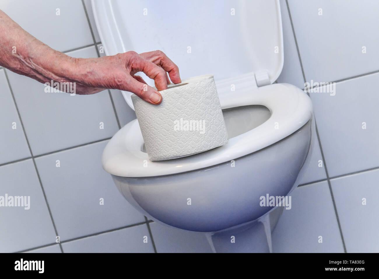 Loo paper, toilet, Klopapier, Toilette Stock Photo