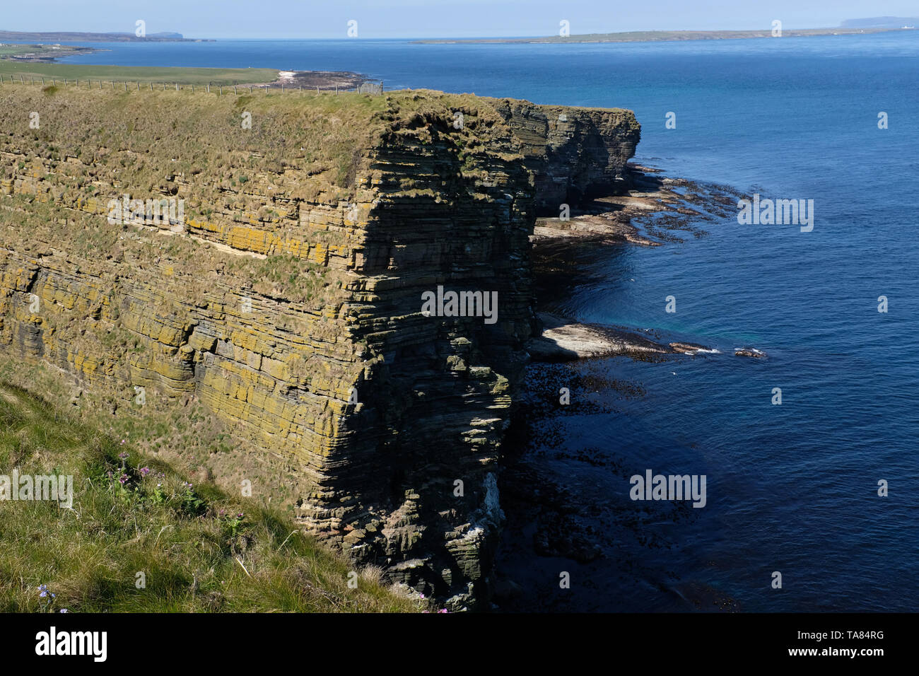 North coast, cliffs close to John o' Groat Scotland May 8th - 19th. Trip across Scotland Foto Samantha Zucchi Insidefoto - Stock Image