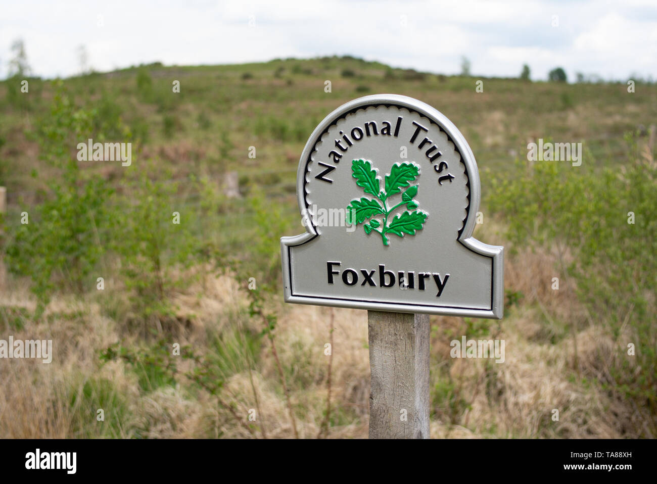Foxbury National trust silver sign, Foxbury is 150 hectare site of heathland and woodland that protects wildlife and is closed to the public. Stock Photo