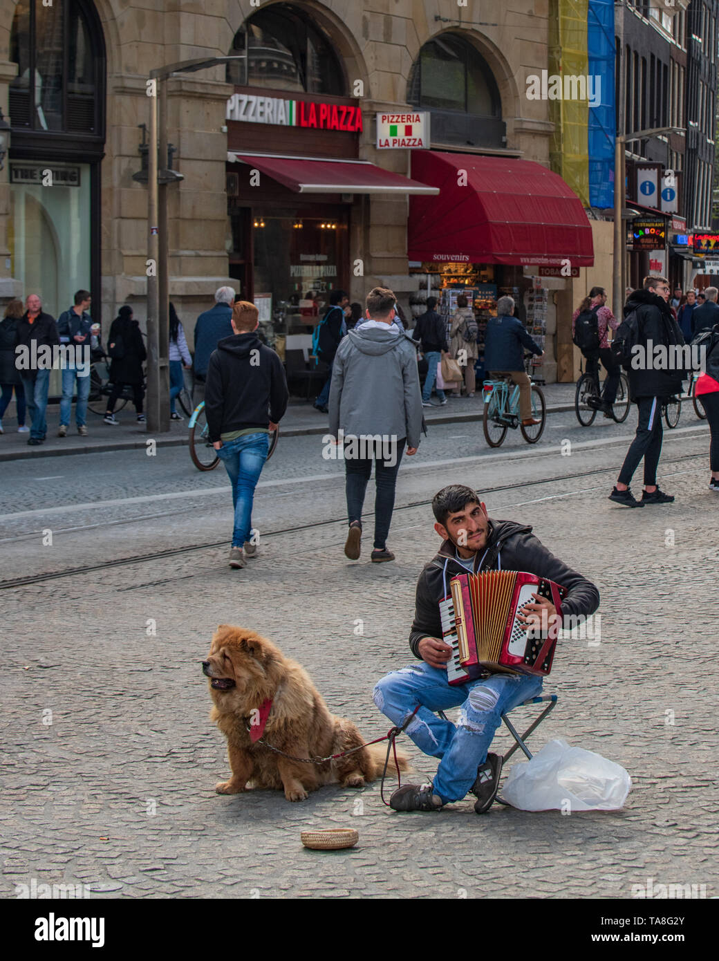 Amsterdam street performer in Dam Square - an accordion player / busker busking outside of the Royal Palace of Amsterdam - Dutch street musician - Stock Image