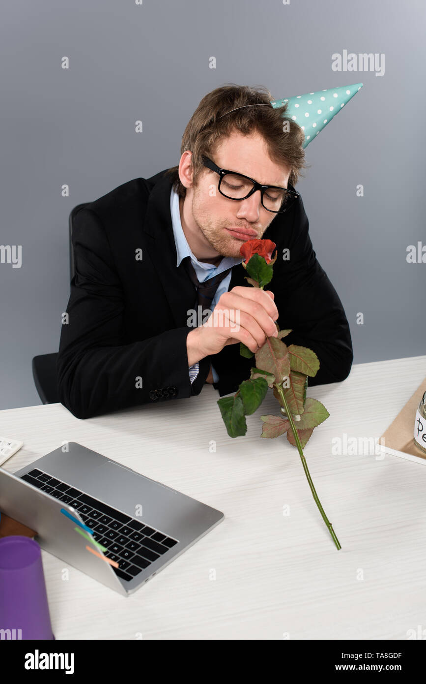 drunk businessman in birthday cap smelling rose at workplace on grey background - Stock Image