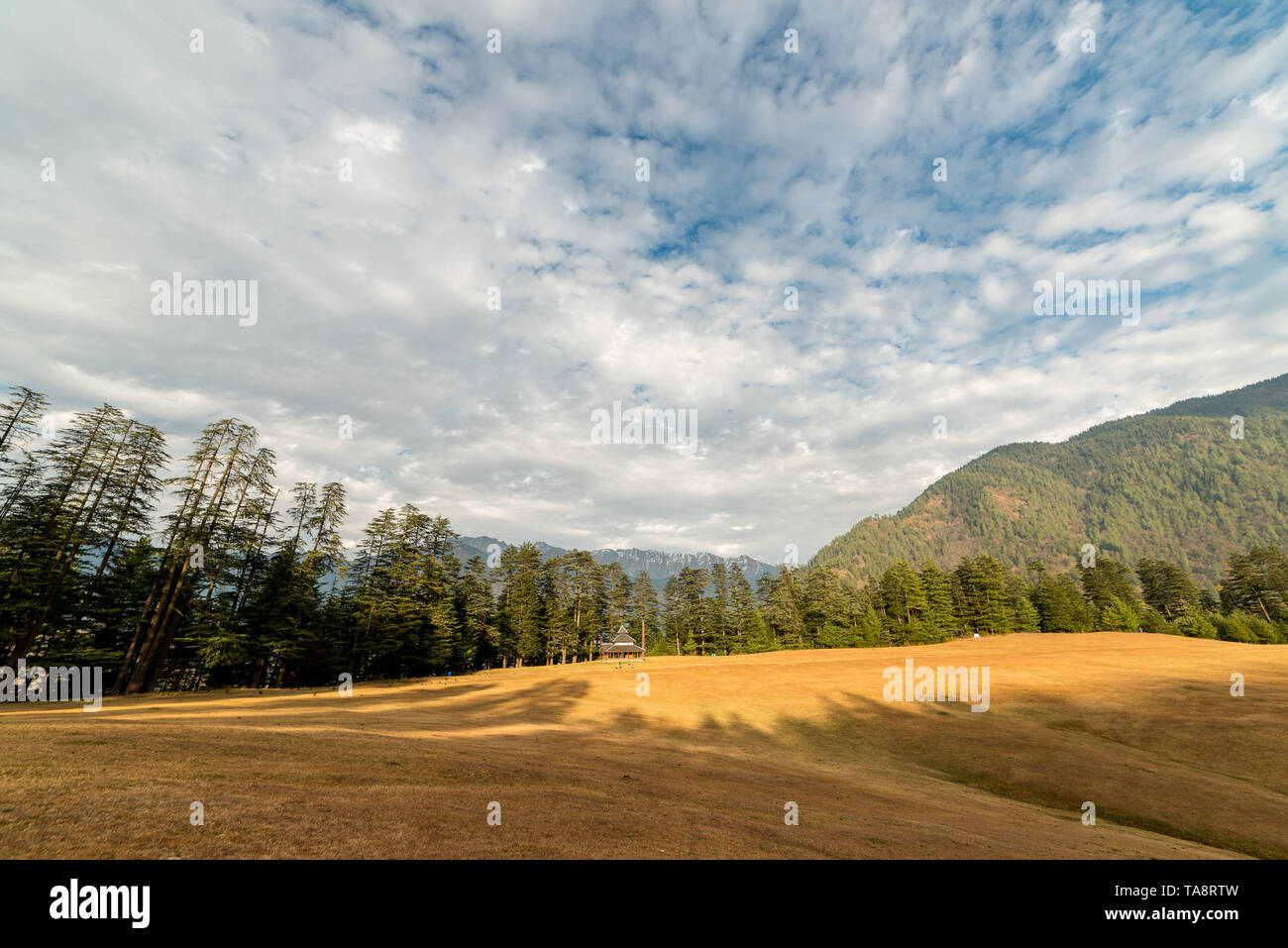 Sunset in himalayas - Beautifull evening in mountains - Shahgarh Meadow - - Stock Image