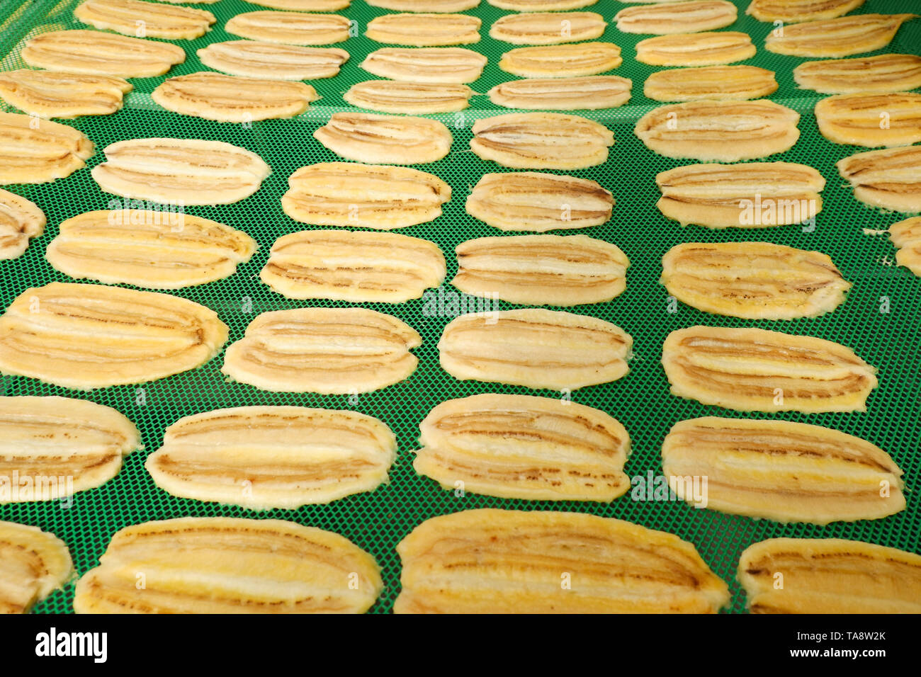 Dried fruit organic / Making dry banana fruit on net in room temperature control to dry with sunlight and smoked the heat from gas - slice dried banan - Stock Image