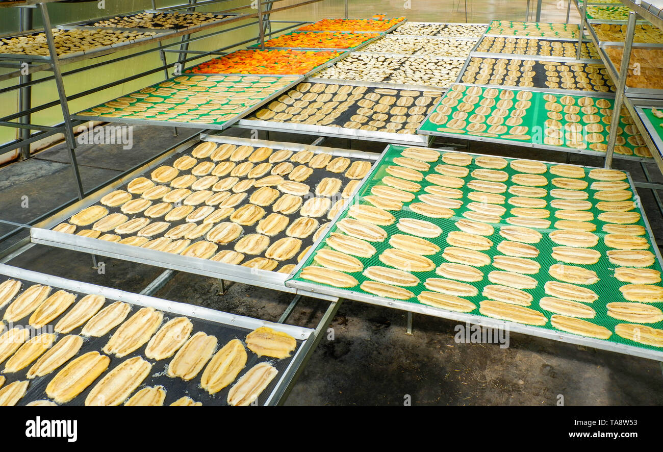 Dried fruit / Making dry fruit on net with banana pineapple papaya dried and others in room temperature control to dry with sunlight and smoked the he - Stock Image