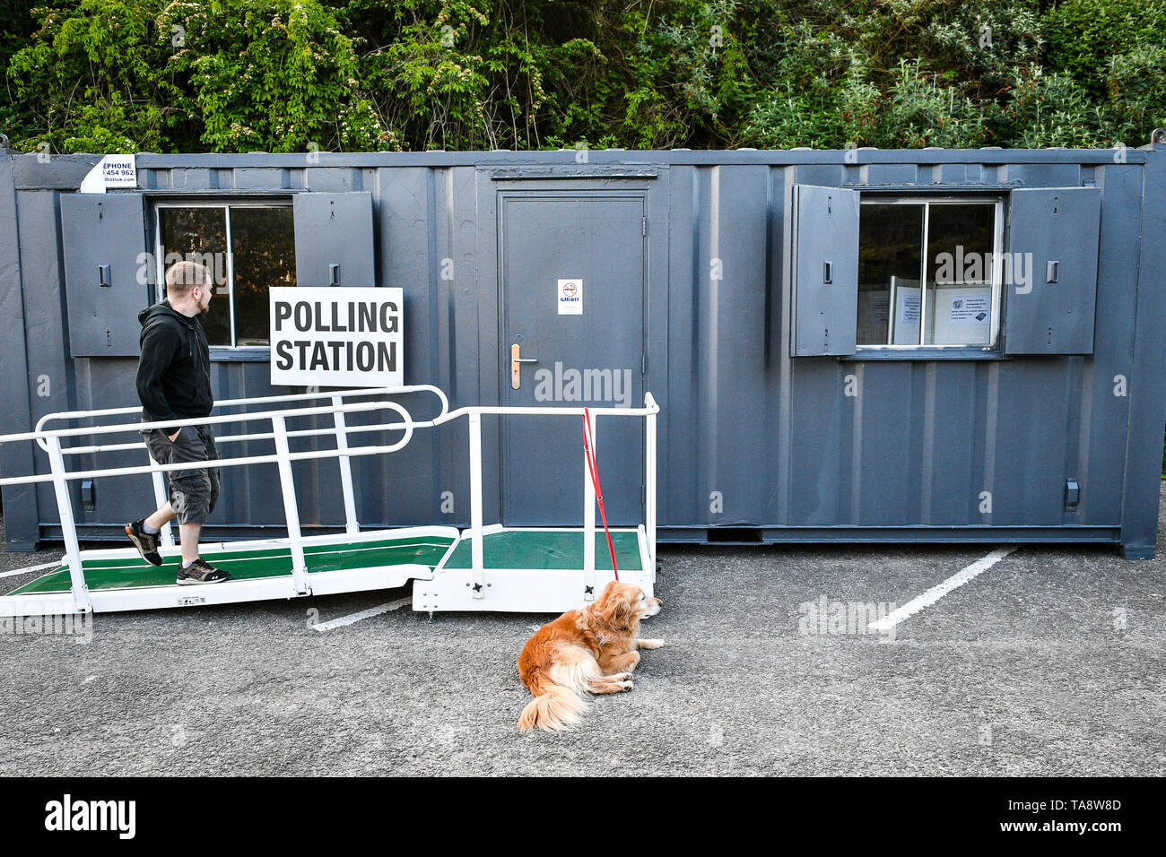 A man enters a portable polling station in Bristol where a dog is tied up waiting for its owner to vote as voters head to the polls for the European Parliament election. - Stock Image