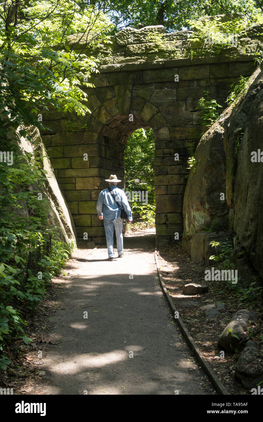 Man Walking Down Path in the Ramble in Central Park, NYC, USA - Stock Image