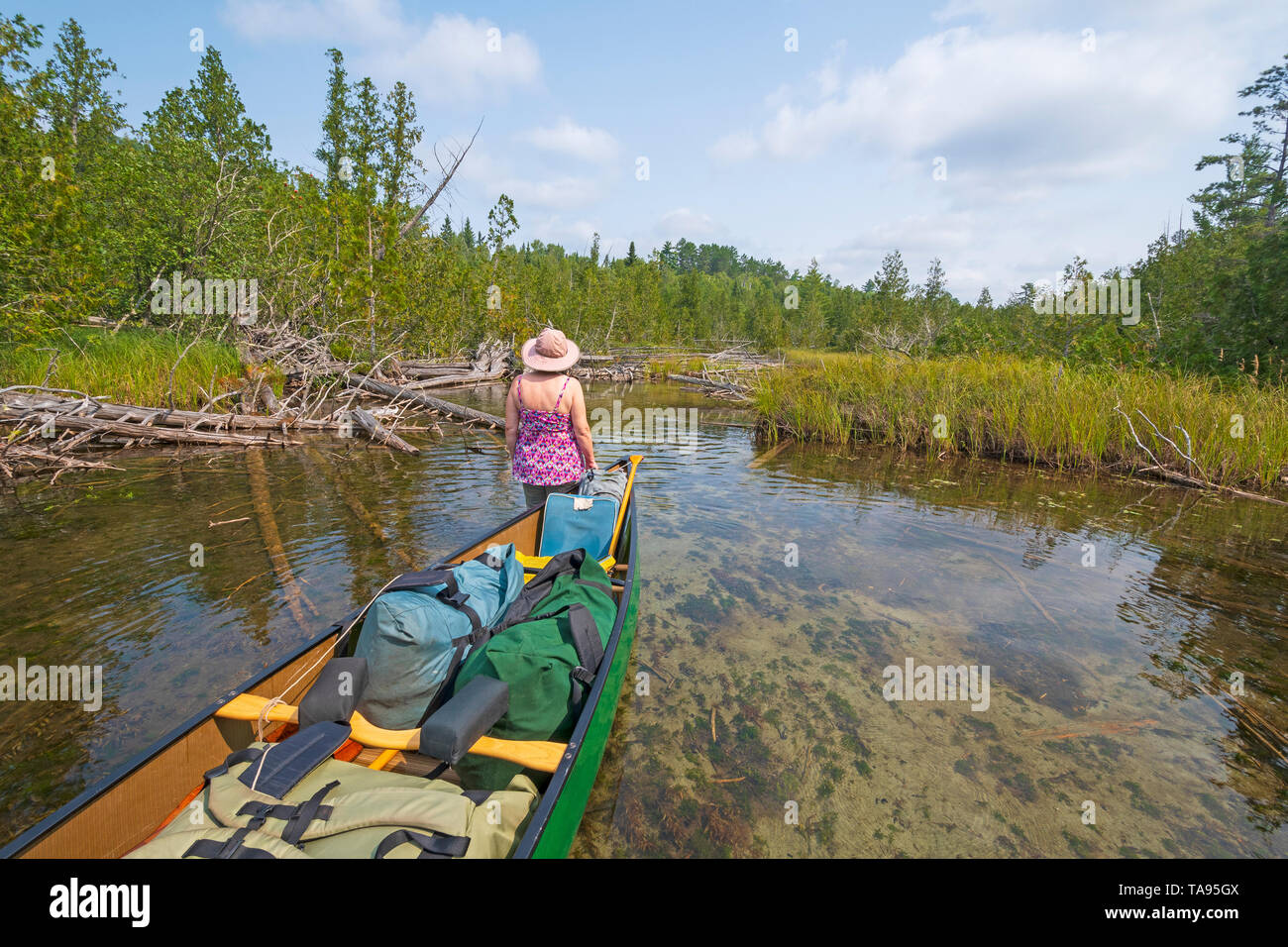 Heading into  a Remote Stream in the Wilderness in Quetico Provincial Park in Ontario - Stock Image