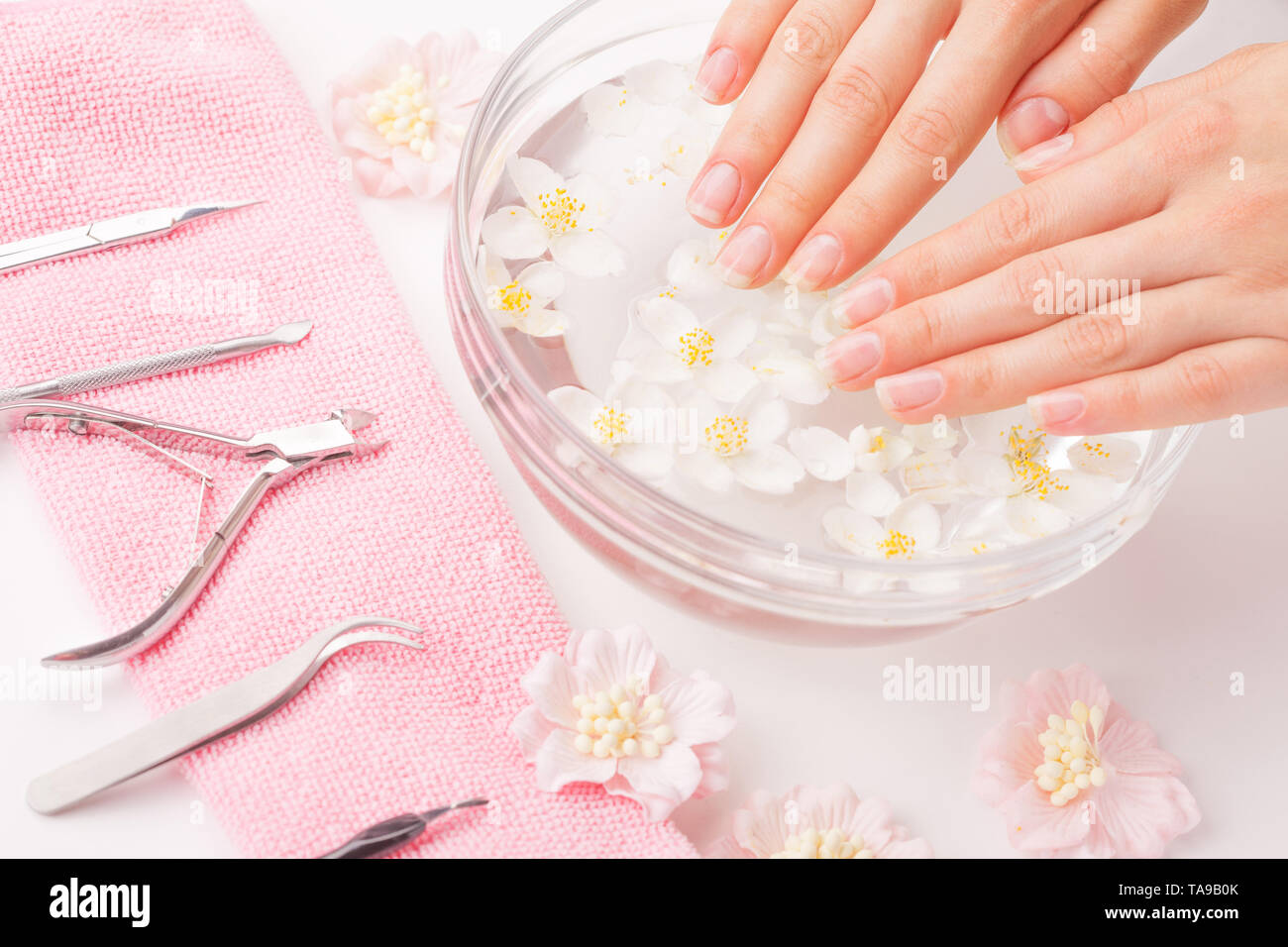 Woman hands with manicure nails and bowl with water and daisy flower. - Stock Image