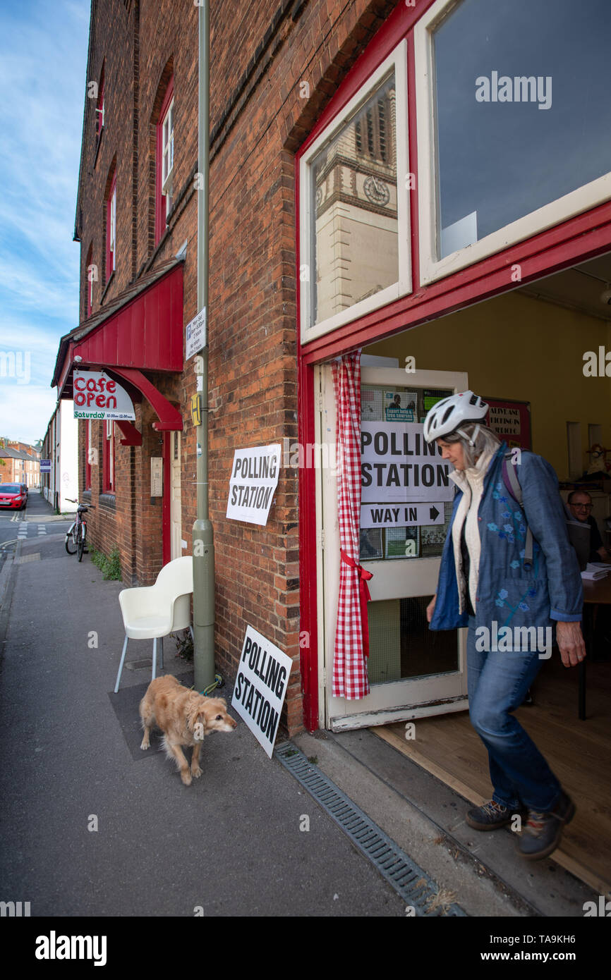 Oxford, Oxfordshire, UK. 23 May, 2019. European Elections. It's the day of European Elections and residents are voting in force. A collie cross dog sits outside a polling station in Jericho, Oxford, while residents go into the Jericho Community Centre to vote. St. Barnabas Church can be seen in the reflection of the windows. #DogsAtPollingStations Credit: Sidney Bruere/Alamy Live News - Stock Image
