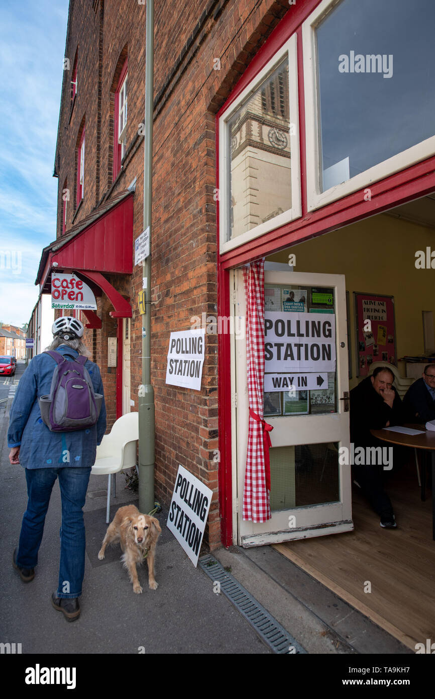 Oxford, Oxfordshire, UK. 23 May, 2019. European Elections. It's the day of European Elections and residents are voting in force. A collie cross dog sits outside a polling station in Jericho, Oxford, while residents go into the Jericho Community Centre to vote. St. Barnabas Church can be seen in the reflection in the window. #DogsAtPollingStations Credit: Sidney Bruere/Alamy Live News - Stock Image