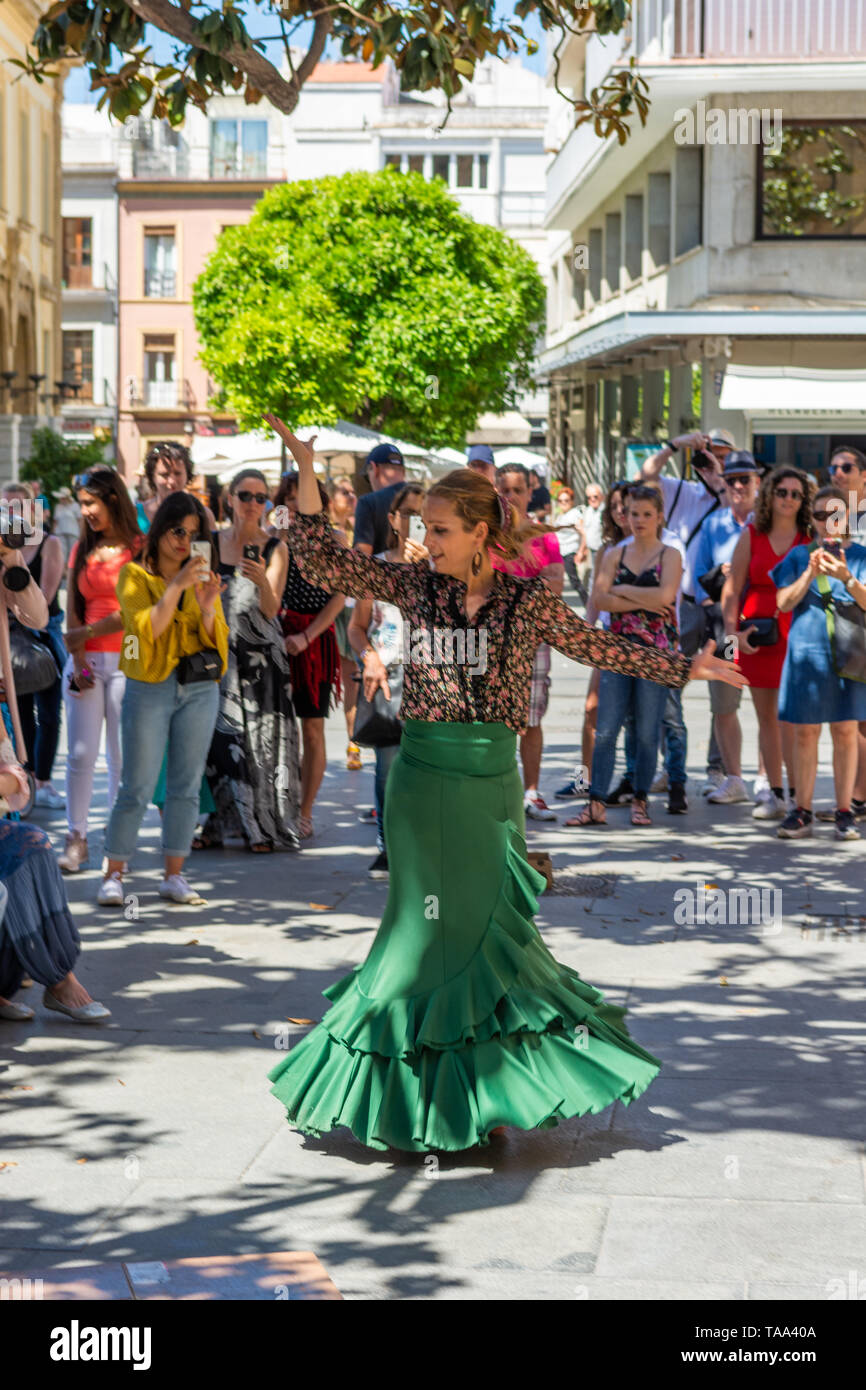 Flamenco dancer entertaining a crowd on the street in Seville, Andalusia region, Spain - Stock Image