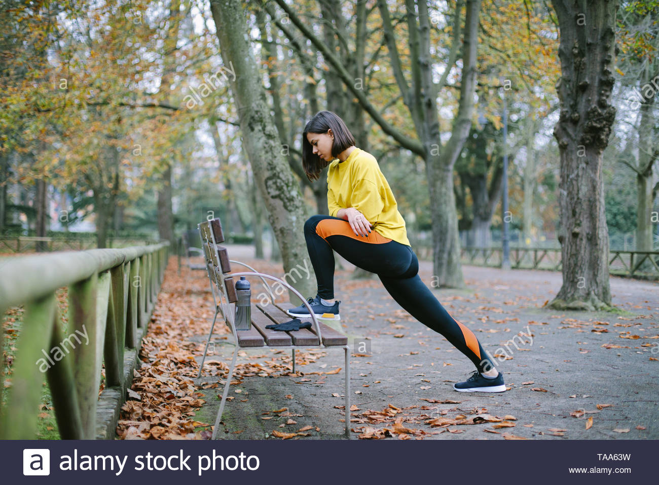 Female athlete stretching for warming up before running at city park in autumn. Sporty woman exercising outdoor. - Stock Image