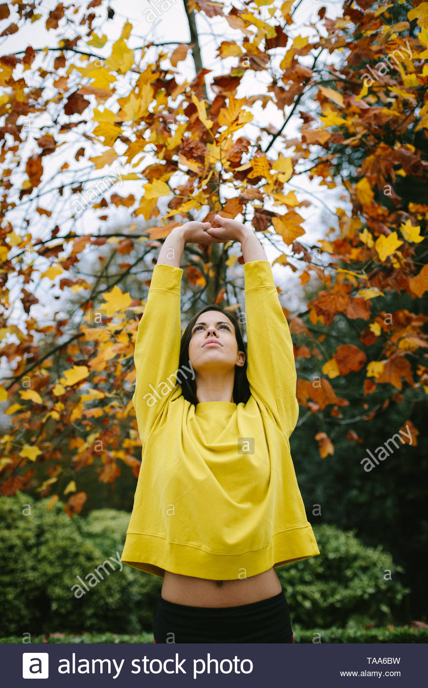Sporty young woman doing stretching relaxing and breathing exercise under a tree in autumn at city park. - Stock Image