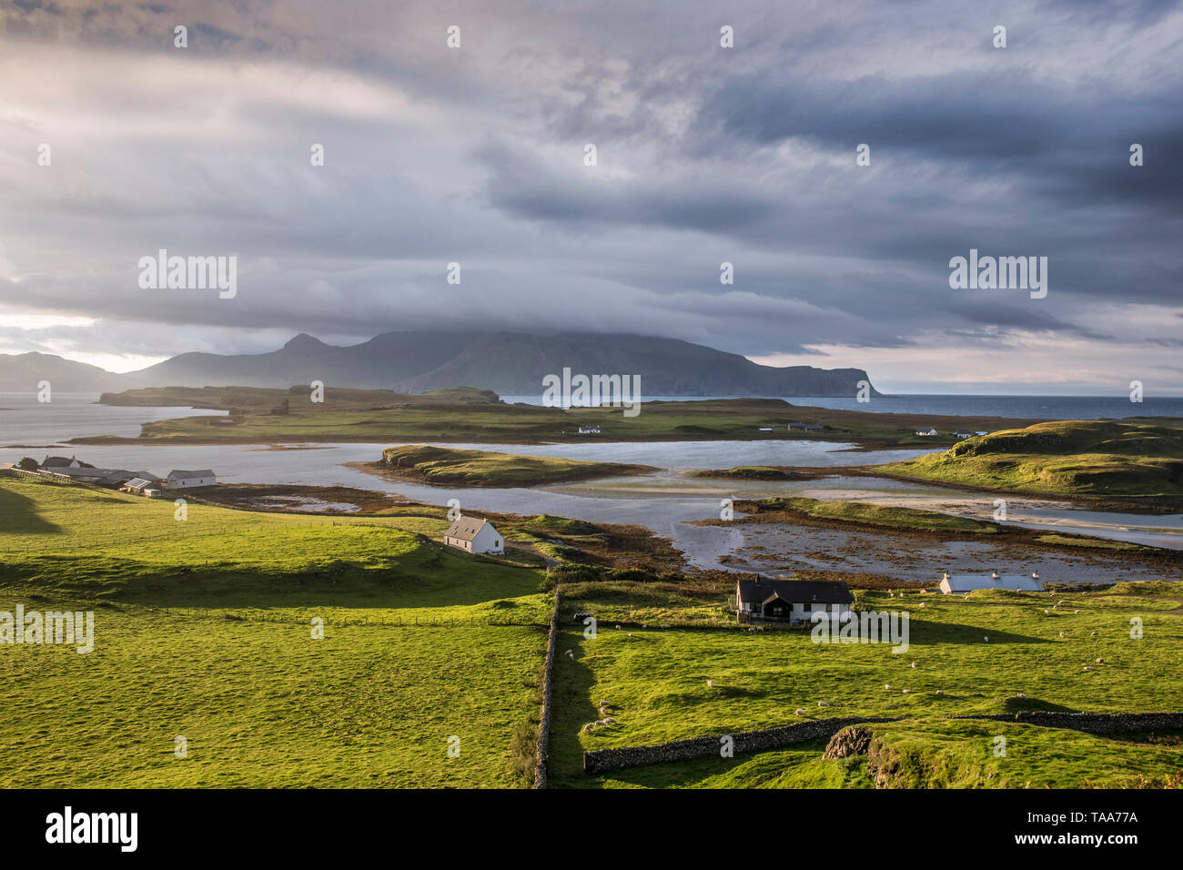 Canna and Sanday, Small isles with view to Rum at sunrise - Stock Image