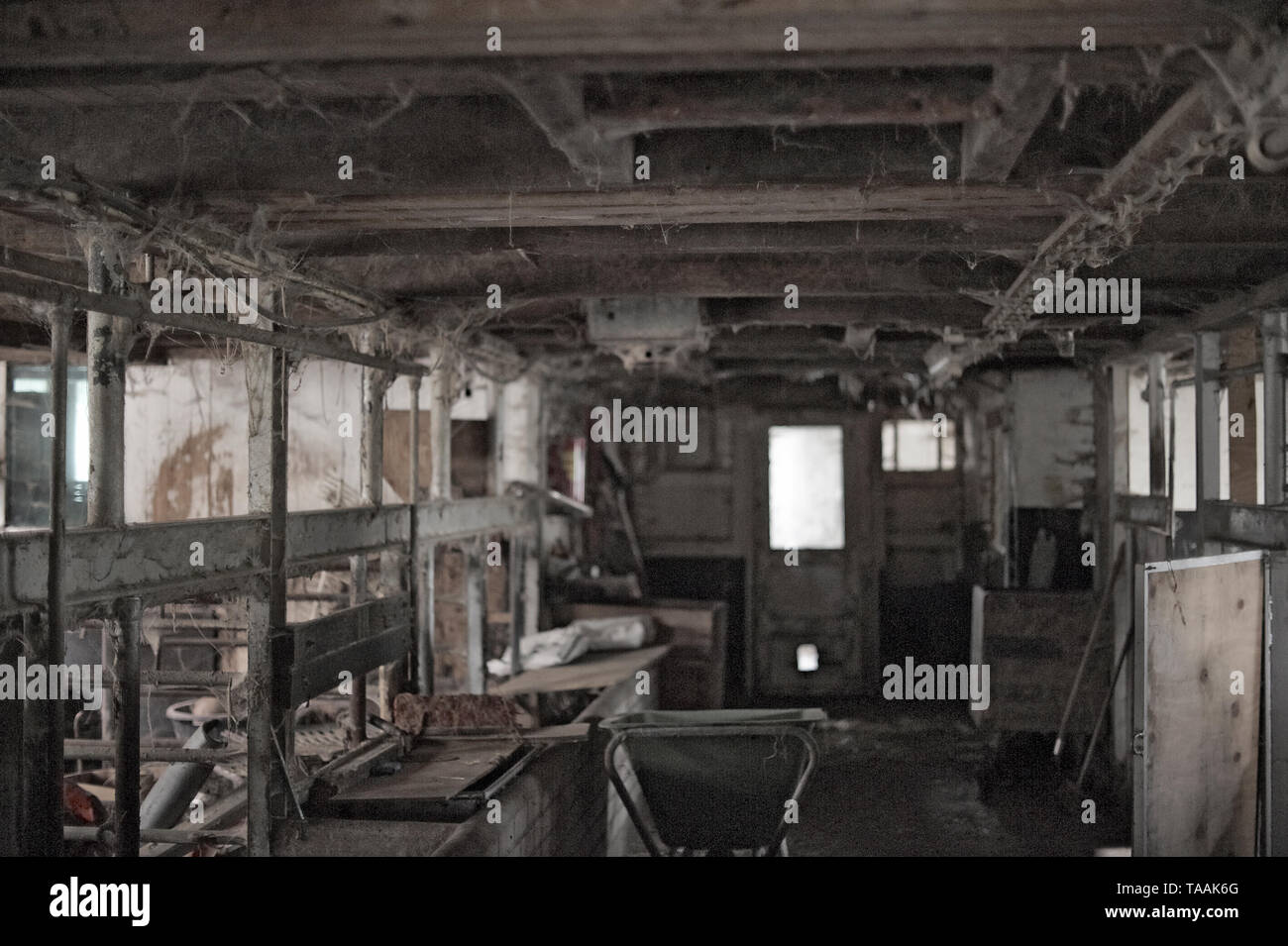 Interior of a farm with shattered windows and broken things everywhere. A place that has seen better days - Stock Image
