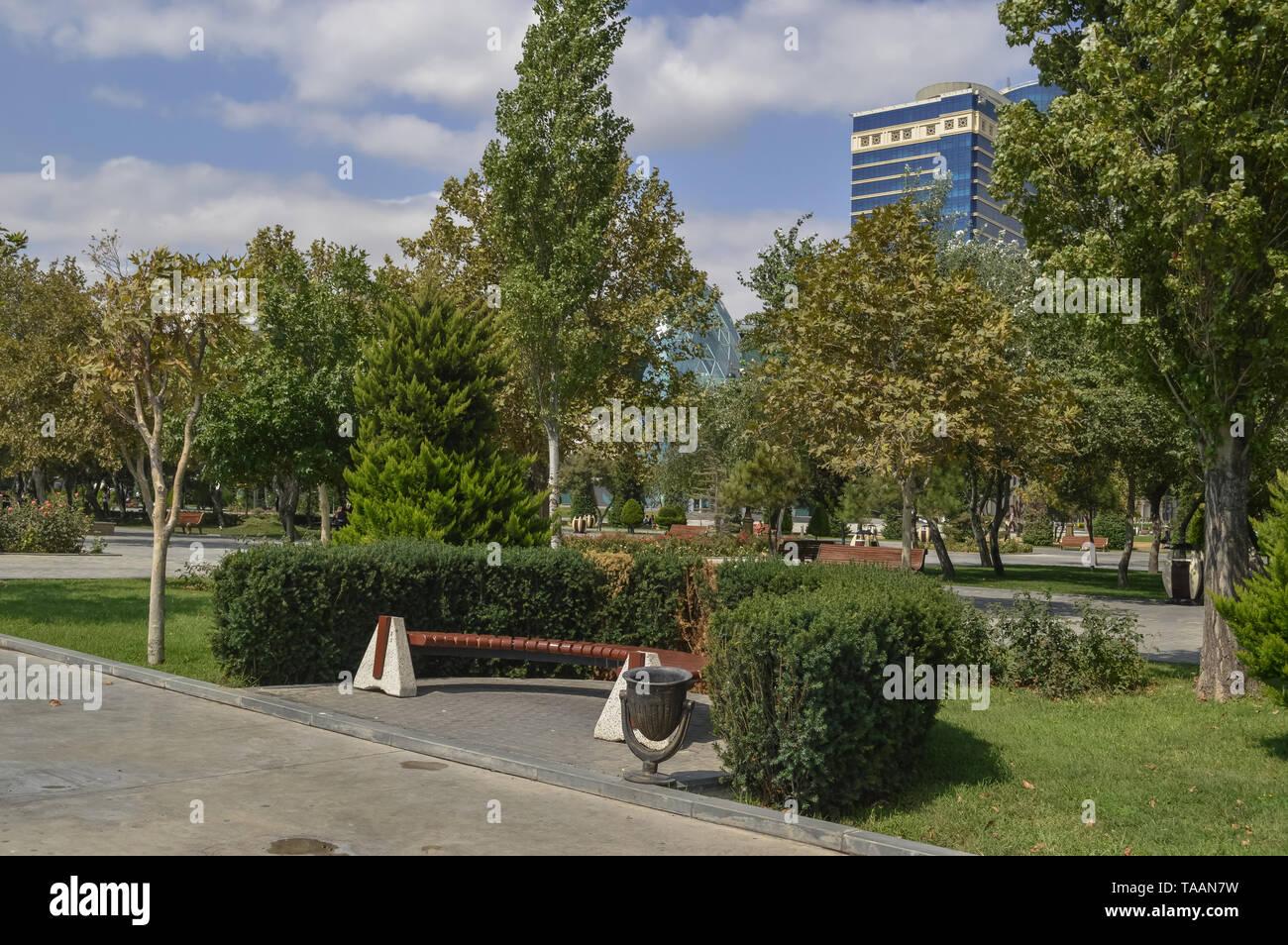 bench and trash can placed inside bushes at Baku Bulvar - Stock Image