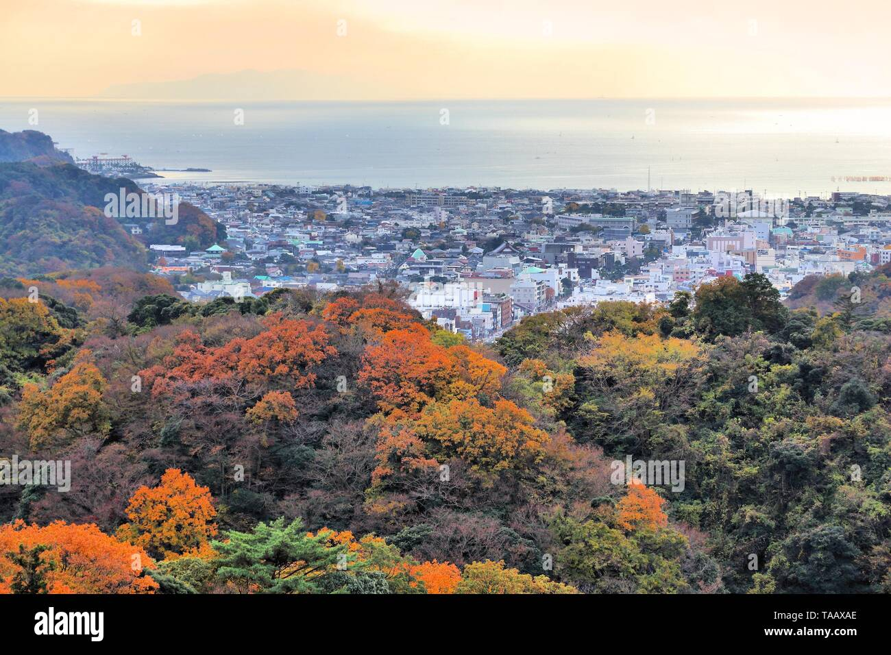 Kamakura, Japan. Aerial view with autumn forests. - Stock Image