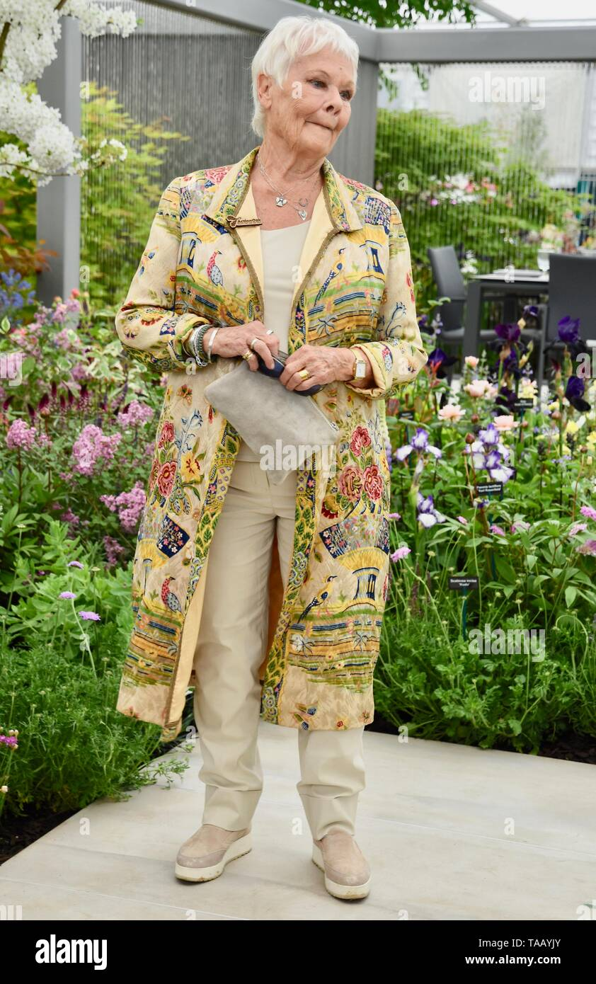 Dame Judi Dench was presented with a sapling elm tree to launch the re-elming of the British Countryside starting this year. Hillier Nurseries, RHS Chelsea Flower Show, London Stock Photo