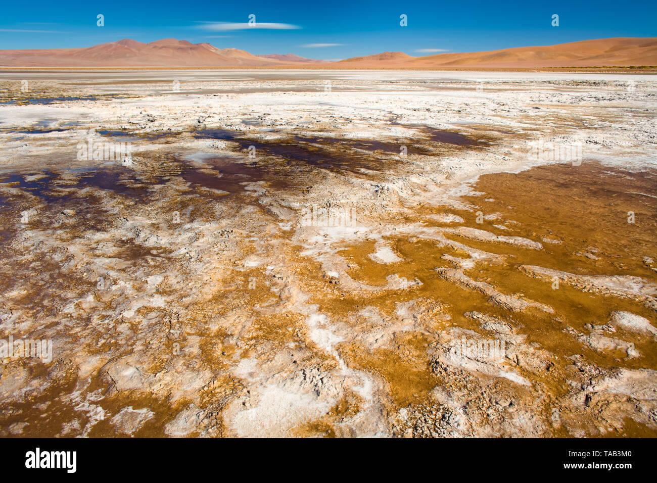 Salt crust at the shore of  Salar del Quisquiro, spanish for Quisquiro Salt Lake in the Altiplano at an altitude of 4150m, Atacama desert, Antofagasta - Stock Image