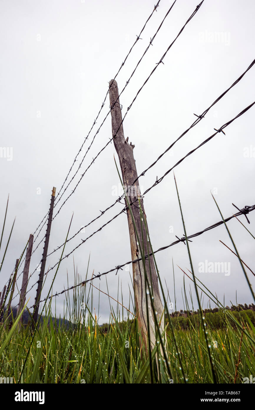 Close-up of barbed wire fence & wooden fence post against overcast stormy sky; ranch in Central Colorado; USA - Stock Image
