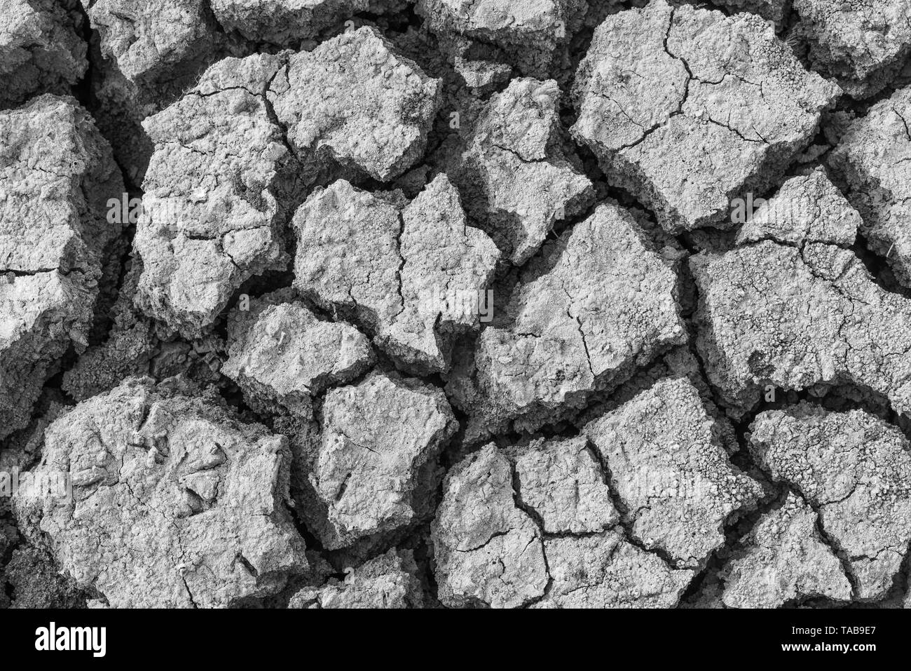 Dry cracked clay texture earth background - Stock Image
