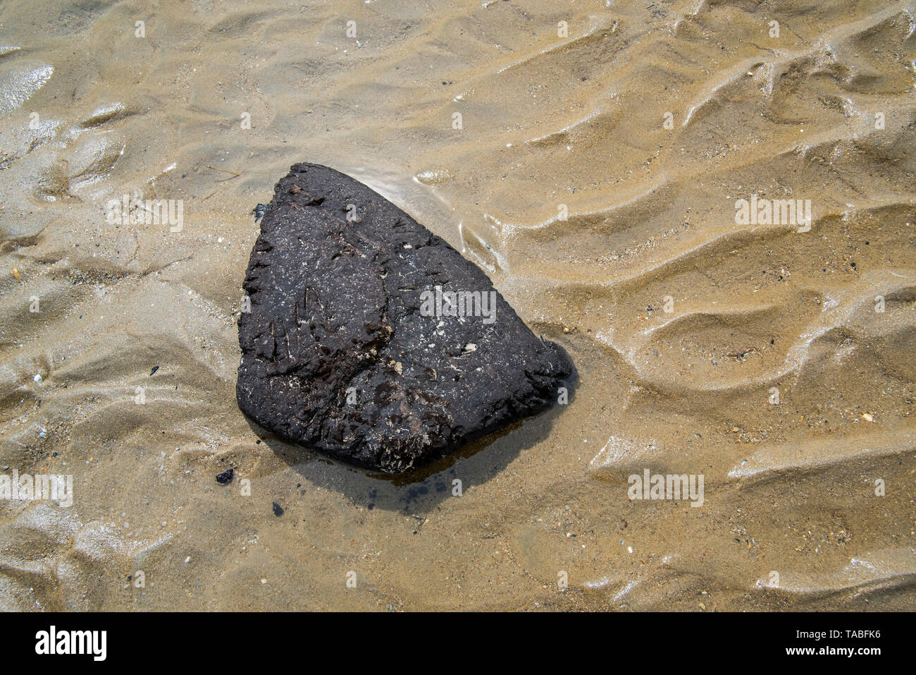 Black chunk of turf from exposed peat layer on the seabed washed ashore on sand beach along the North Sea coast, Belgium - Stock Image
