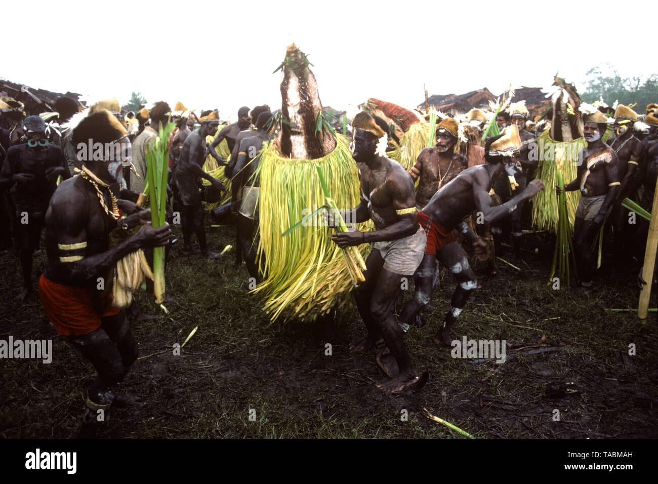 Asmat people: ethnic group living in the Papua province of Indonesia, along the Arafura Sea.  Masked personages during a festival at Agats ('Killing e - Stock Image