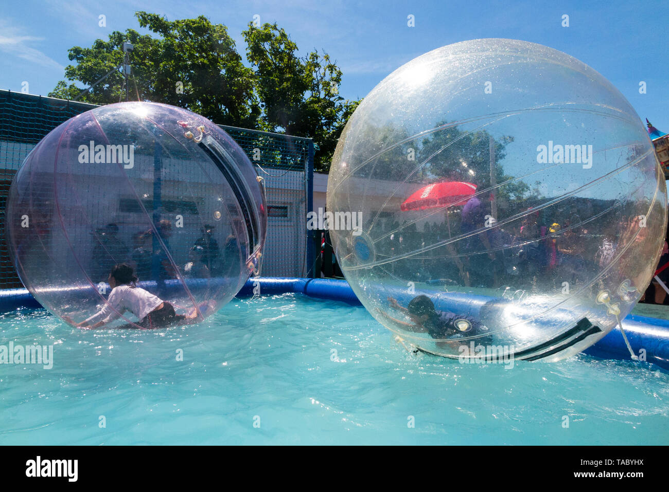 Children / kids enjoy rolling on the surface of a pool of water in inflatable balls called waterwalkerz which allow people to walk on water in a human hamster ball. (99) - Stock Image