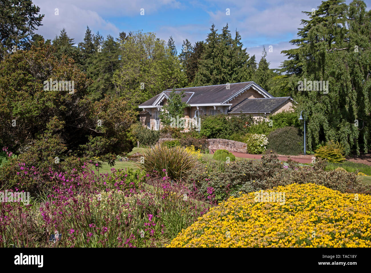 Rock Garden and Caledonia Hall in the Royal Botanic Garden Edinburgh (RBGE), Scotland, UK. - Stock Image
