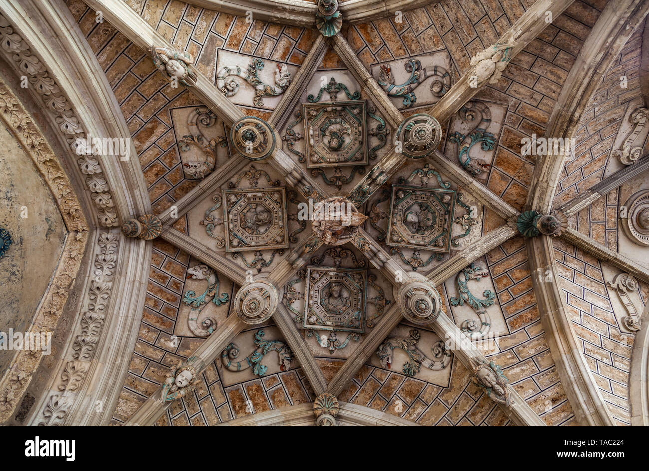 Leon Cathedral, intricate cloister vault ceiling - Stock Image
