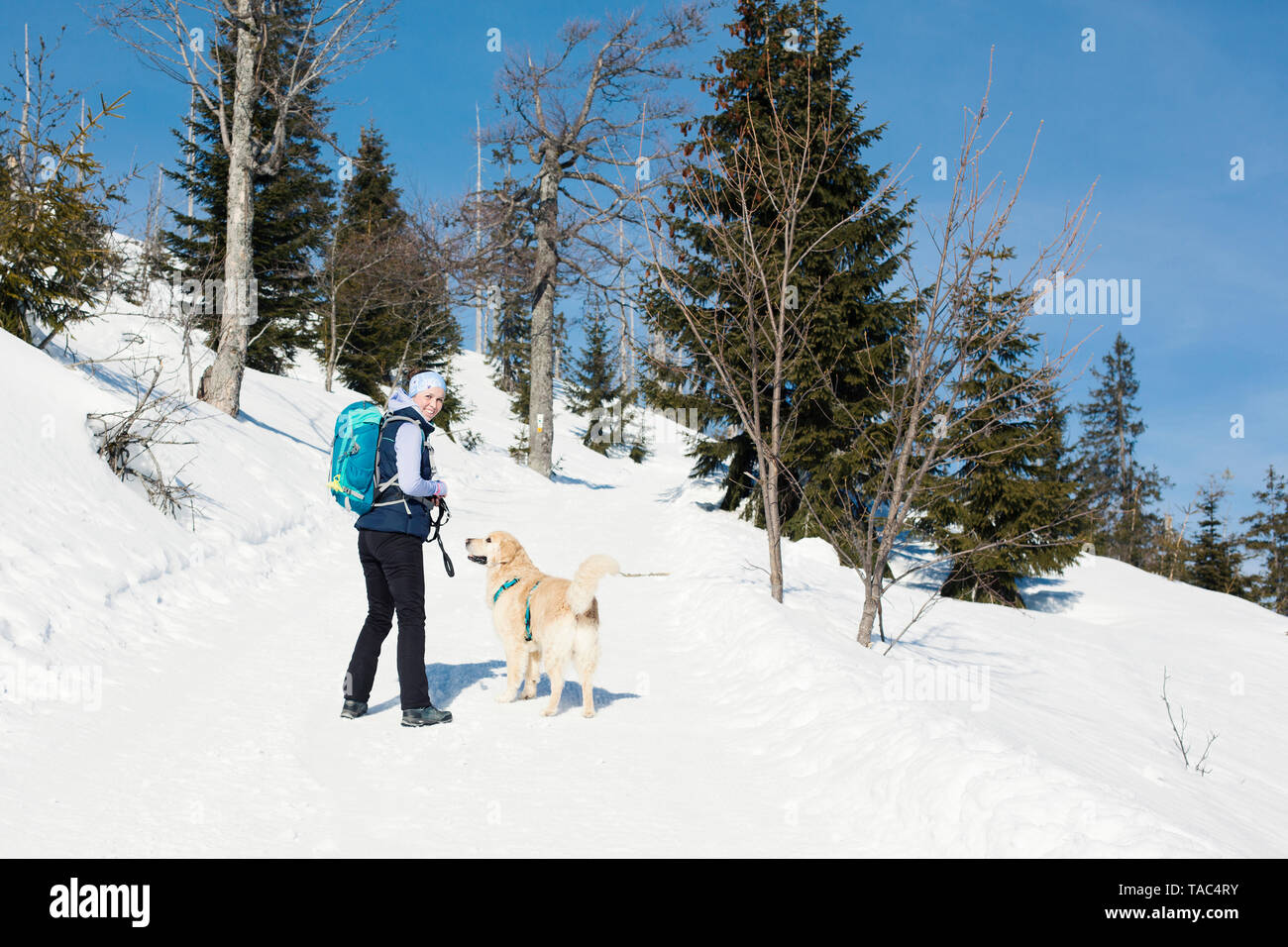Germany, Bavarian Forest, Lusen, smiling woman with dog hiking in winter - Stock Image