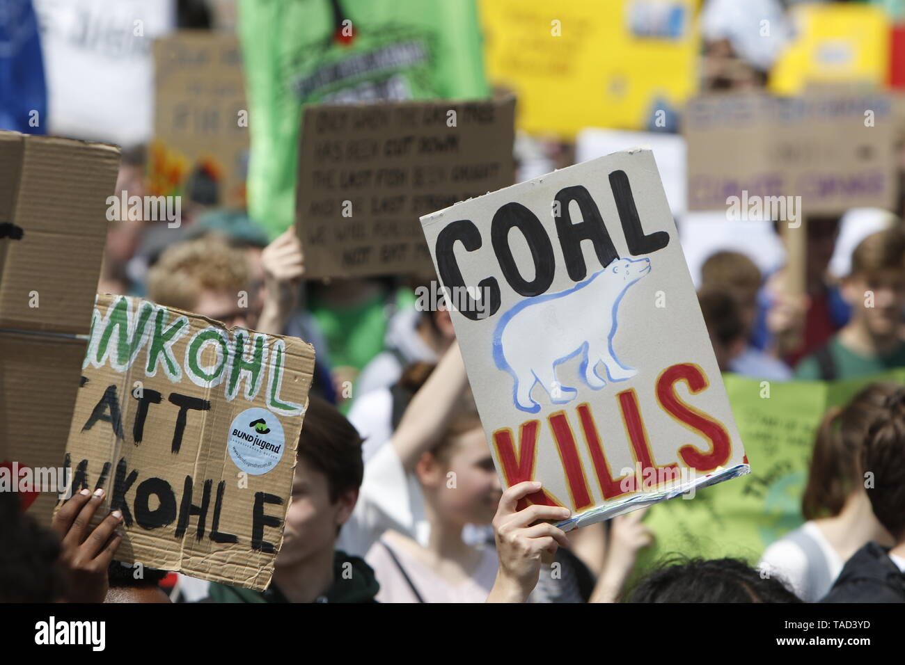 Frankfurt, Germany. 24th May 2019. A protester carries a sign that reads 'Coal kills' with a drawing of a polar bear. Around 4,500 young people marched through Frankfurt to the European Central Bank, to protest against the climate change and for the introduction of measurements against it. The protest took place as part of an Europe wide climate strike, two days ahead of the 2019 European elections. - Stock Image