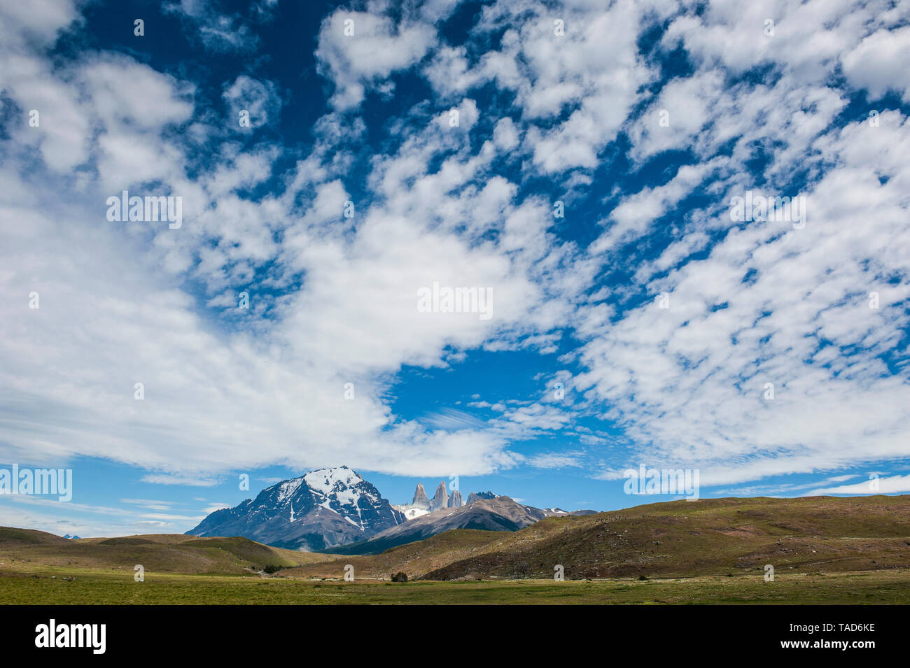Chile, Patagonia, Torres del Paine National Park, meadow and mountains under cloudy sky - Stock Image