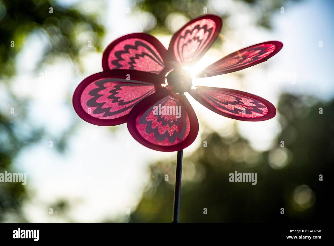 Pinwheel at backlight - Stock Image