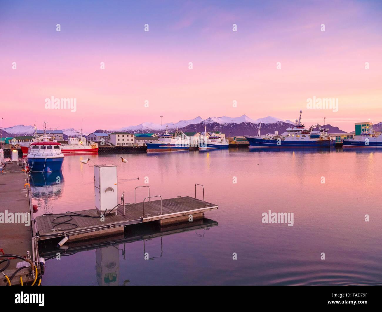 Iceland, Hoefn, harbor at sunrise - Stock Image
