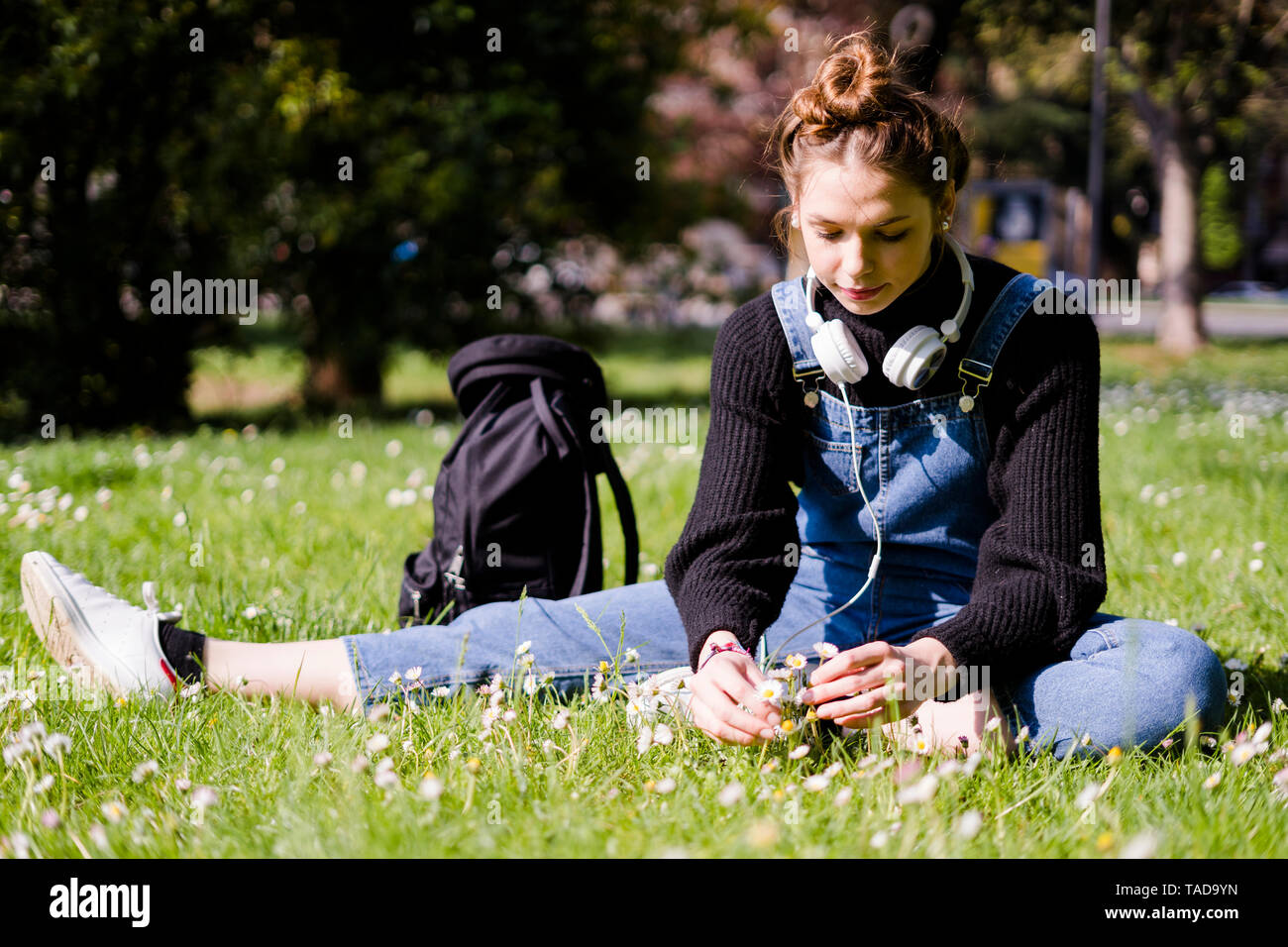Young woman picking daisies in a park - Stock Image