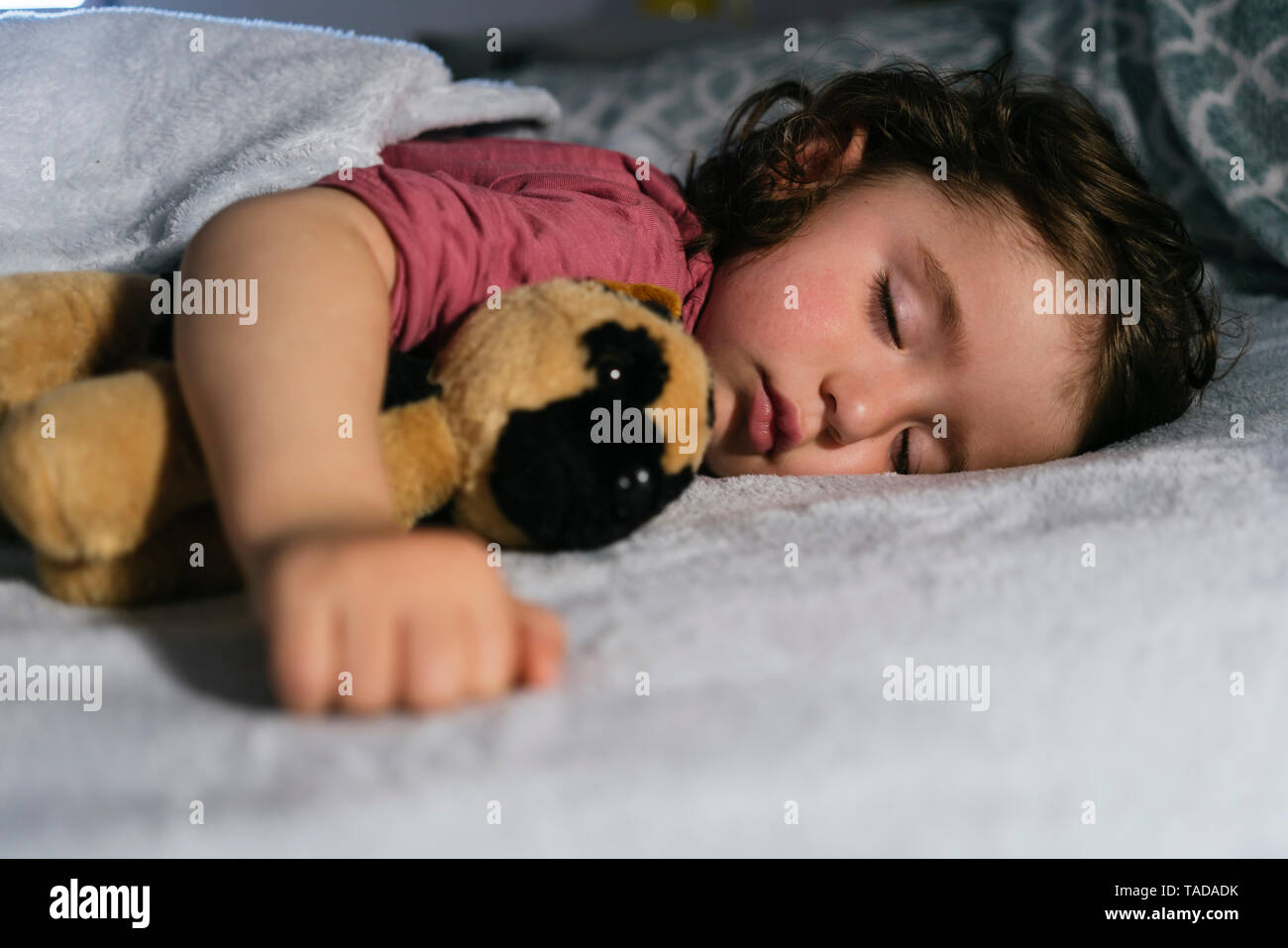 Portrait of toddler girl sleeping in bed  with a soft toy dog - Stock Image