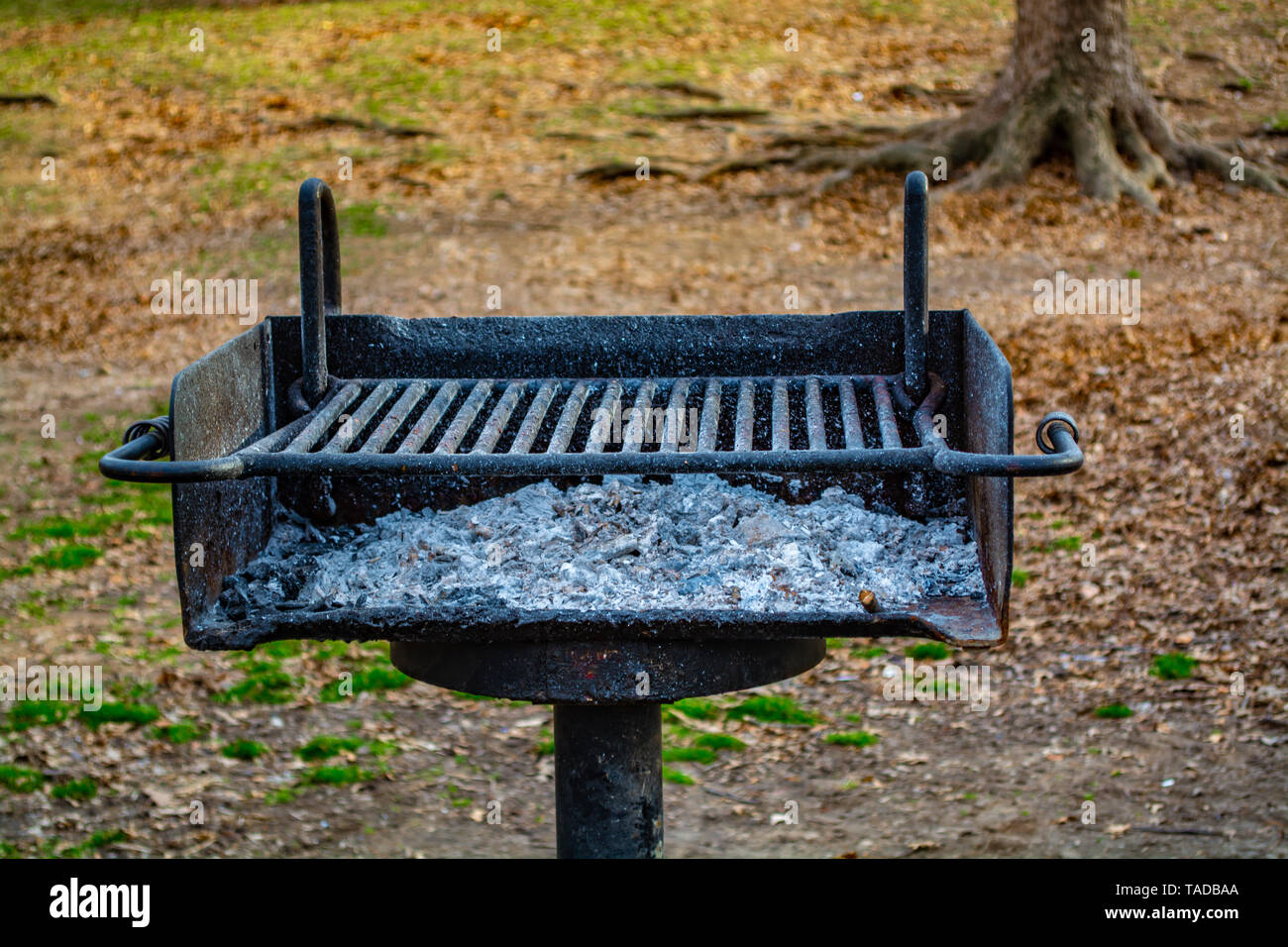 Burned charcoals and white soot on the barbecue grill in the park. - Stock Image